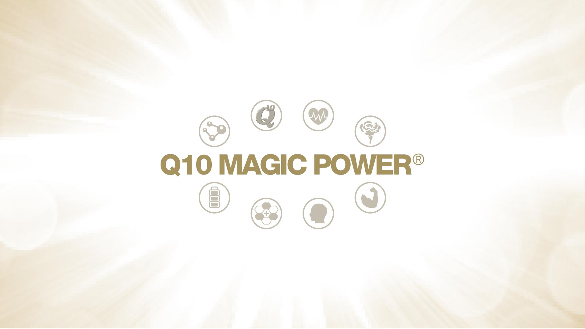 Q10 Magic Power Inhaltsstoffe